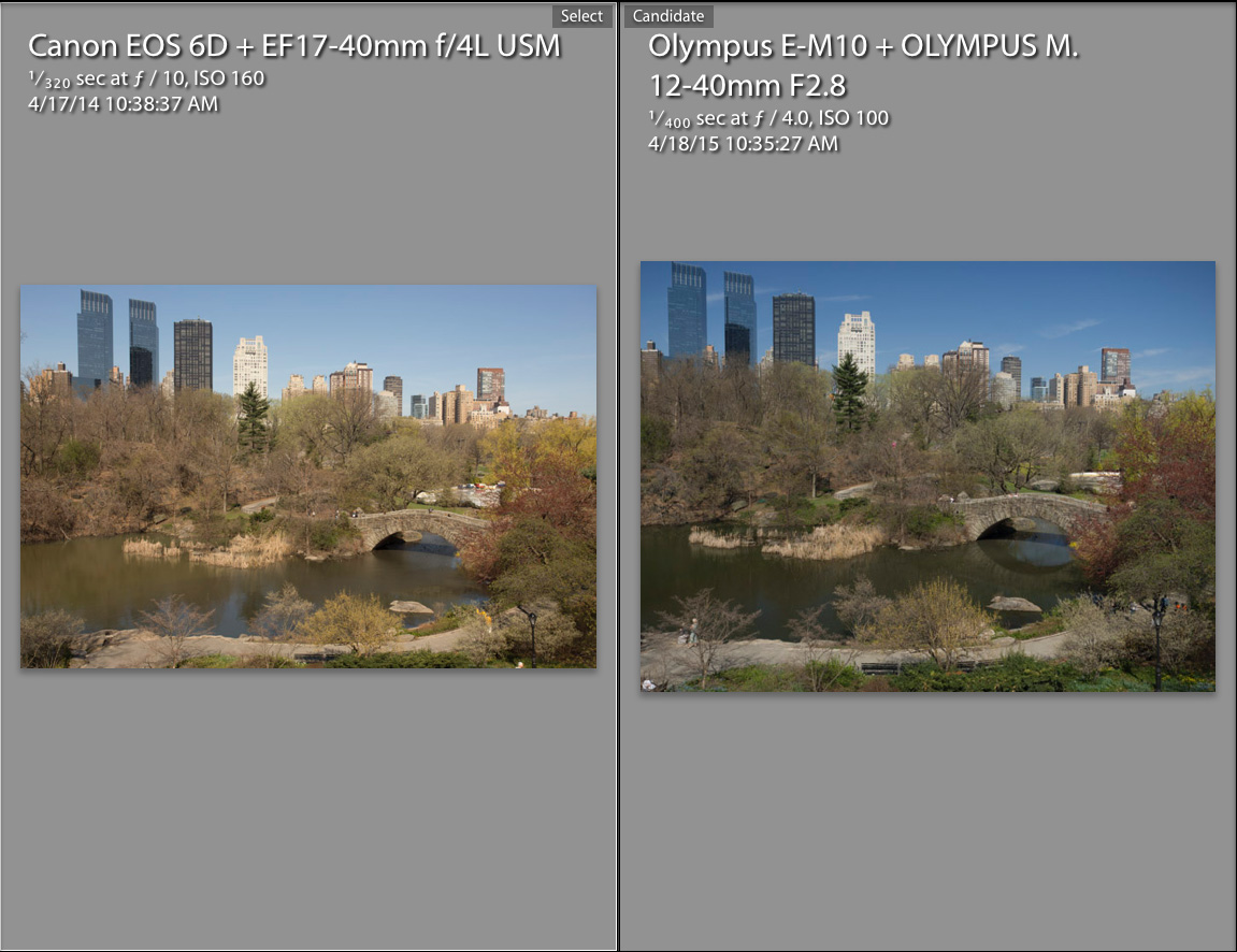 Full Frame vs Micro 4-3 Revisited with Pro Olympus Lens - Olympus ...